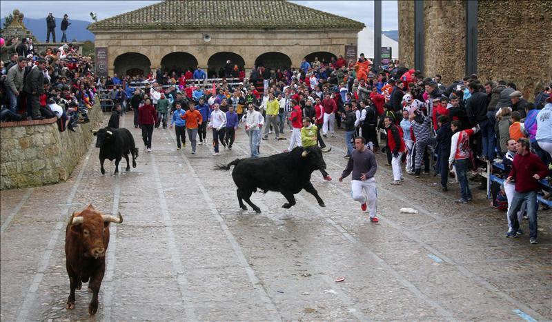 El Carnaval de Salamanca: Ciudad Rodrigo y Miranda del Castañar