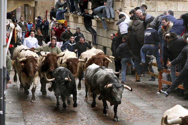 El origen del Carnaval del Toro en Ciudad Rodrigo