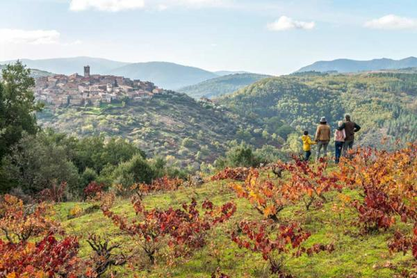 Ruta de enoturismo por la provincia de Salamanca