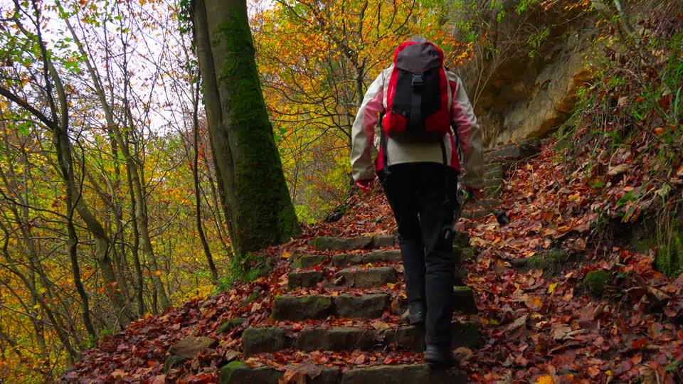 4 Rutas de senderismo para hacer en Salamanca en otoño