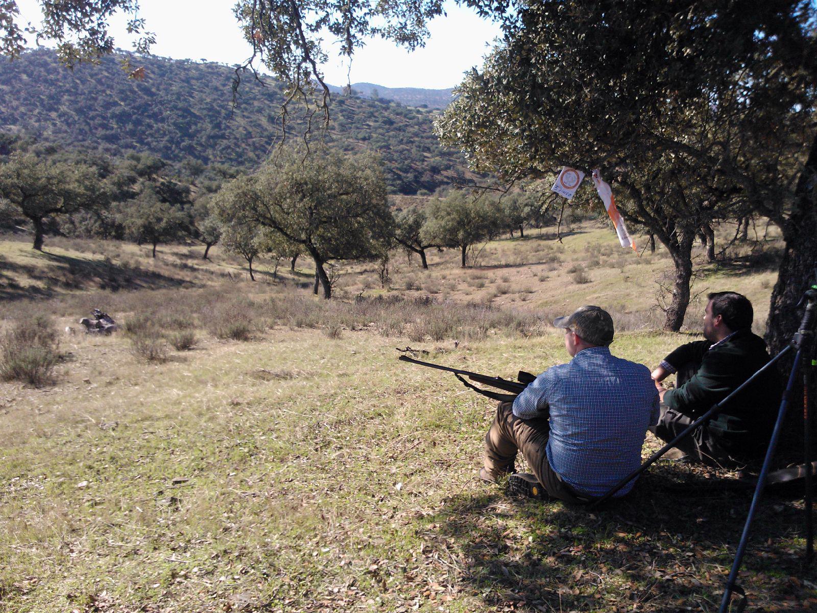 ¿Dónde cazar en Salamanca?: Los mejores cotos de caza mayor y menor