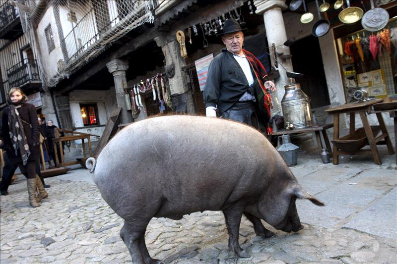 Curiosidades y tradiciones de Salamanca en Navidad
